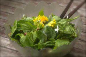 salade-de-printemps